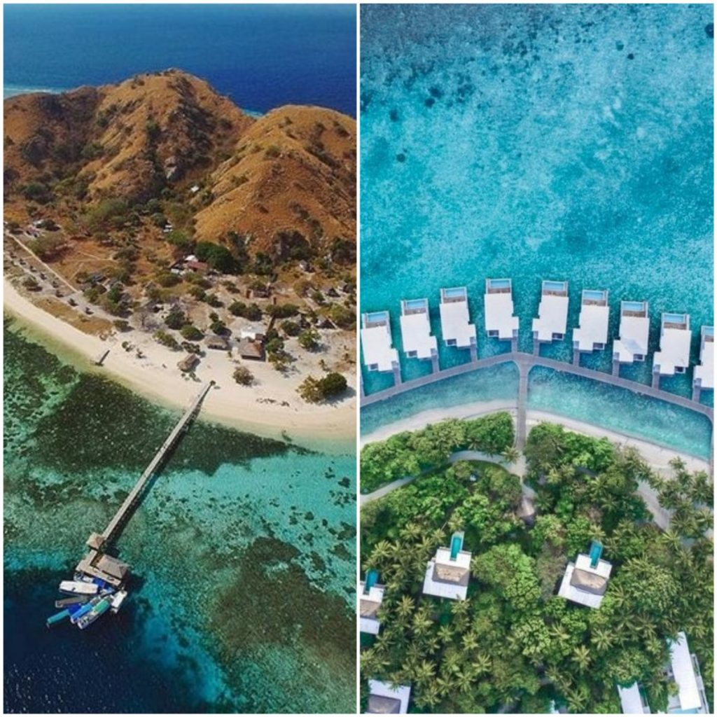 Komodo Liveaboard vs Maldives Liveaboard, Which One Better?