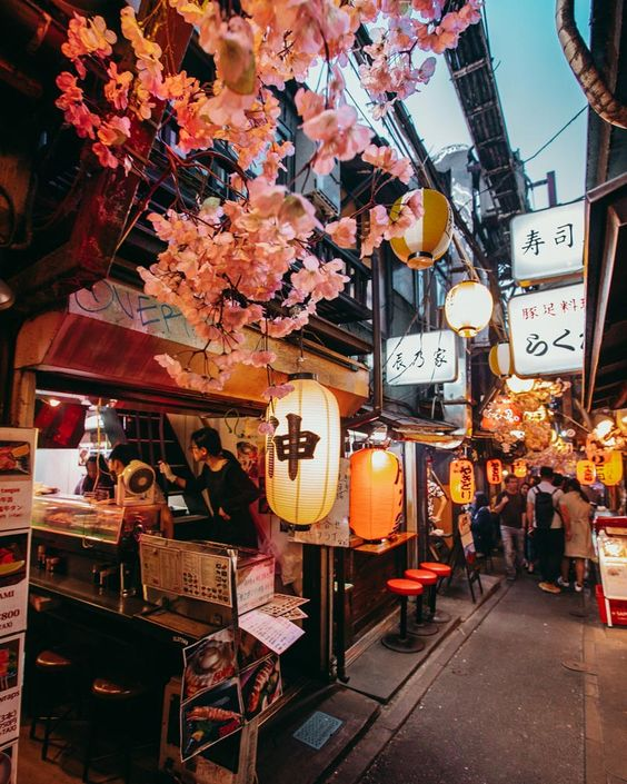 Get To Know Tokyo For More Than What It Looks