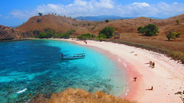 pink beach - Komodo National Park